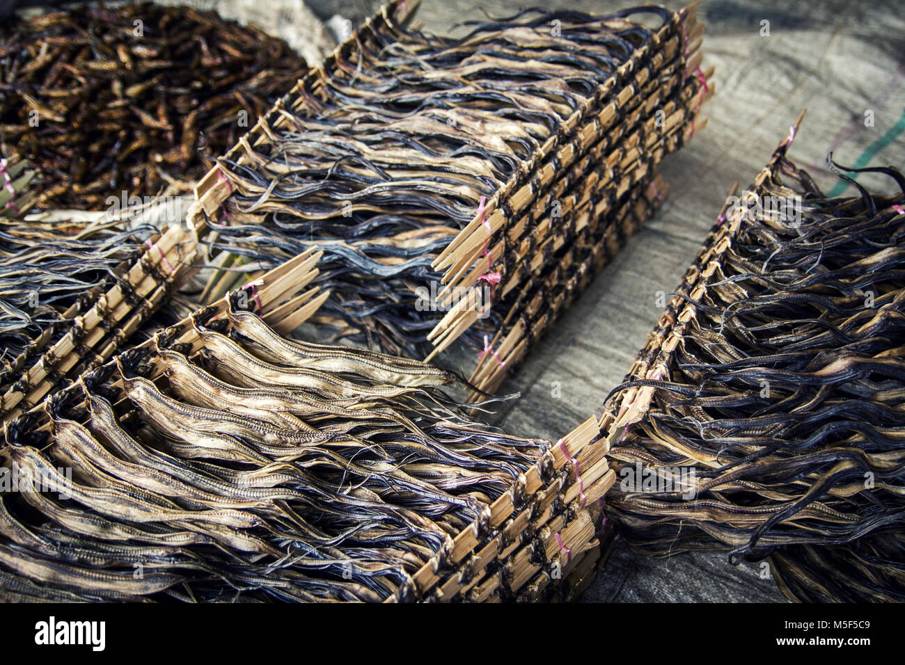Dried Anchovies for sale on market stall in Indonesia. Dried Anchovies have been tied between two slender sticks - Stock Image