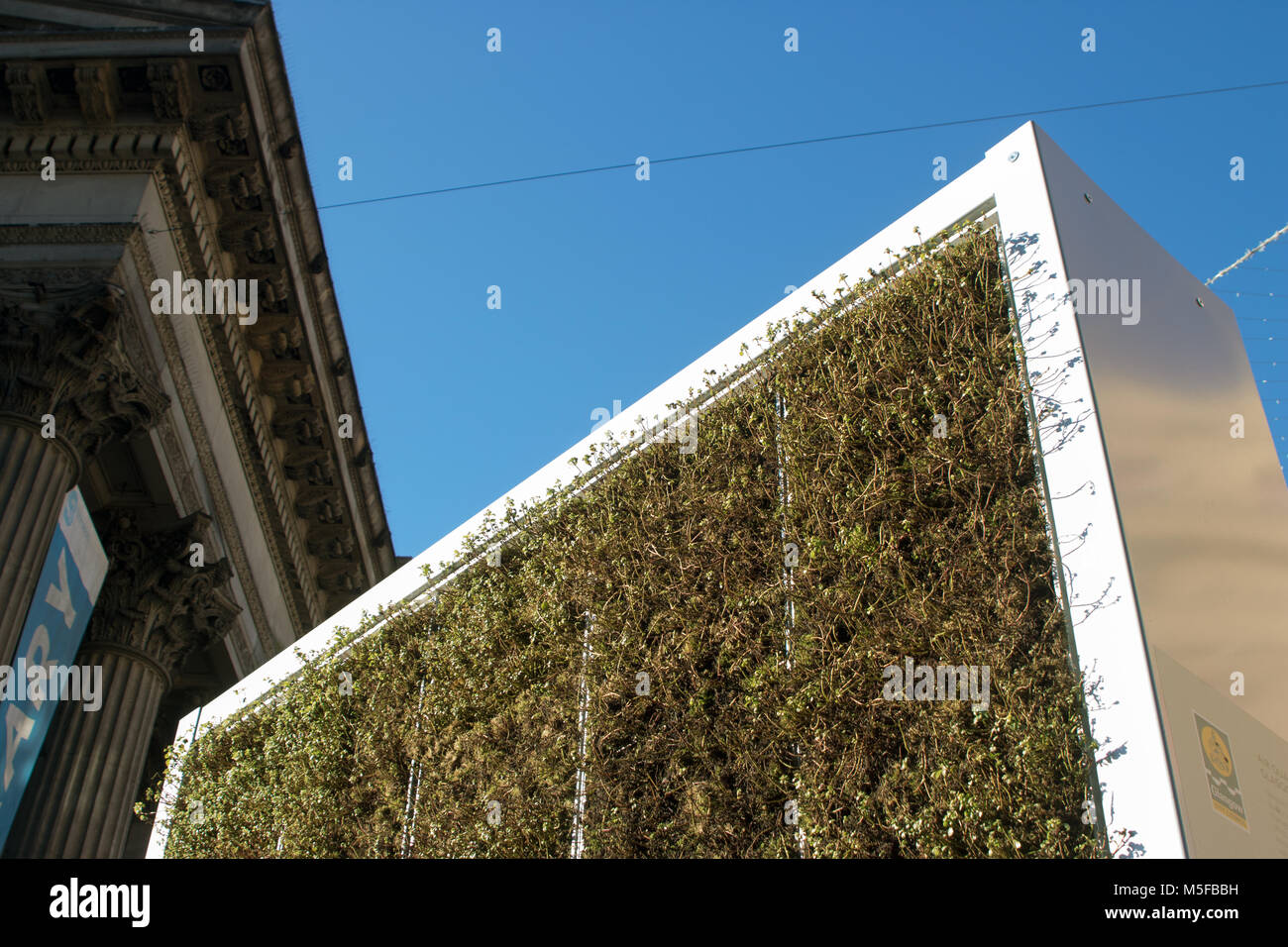 Environmentally friendly CityTree outside the Gallery of Modern Art, Queen Street, Glasgow, Scotland - Stock Image