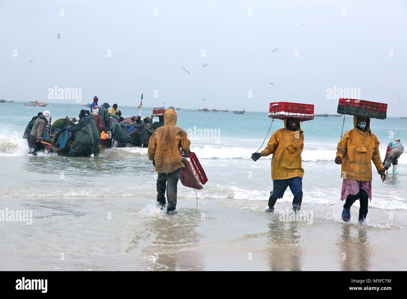 Mauritania fishing industry - Stock Image