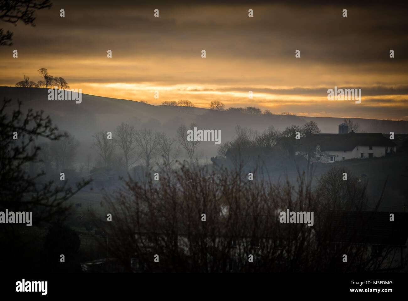 As the sun rose up over the hills, the mist hung low in the Otter Valley. - Stock Image