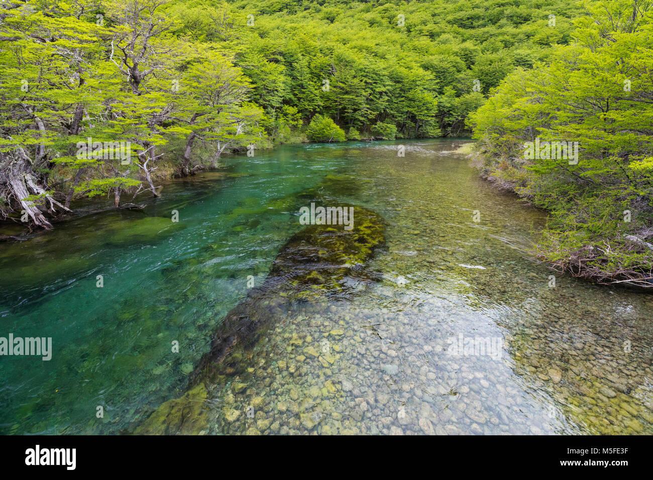 Clear glacial waters; Rio del Vuetas; near Reserva Provincial Lago Del Desierto; Patagonia; Argentina - Stock Image