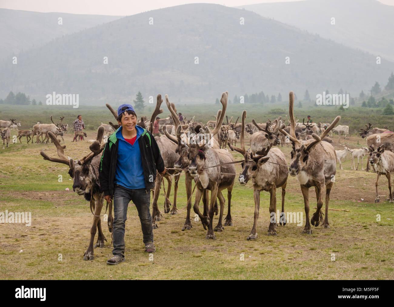 Tsaatan Life, Reindeer Herder, Tsaaganuur, Mongolia - Stock Image