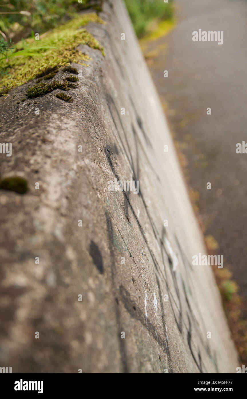 Closeup sideview of a rough concrete wall. Showing man vs nature. - Stock Image