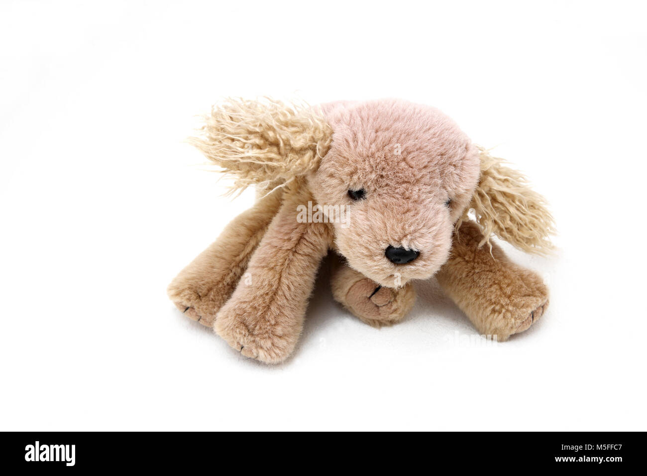 TY Beanie Baby Dog - Stock Image
