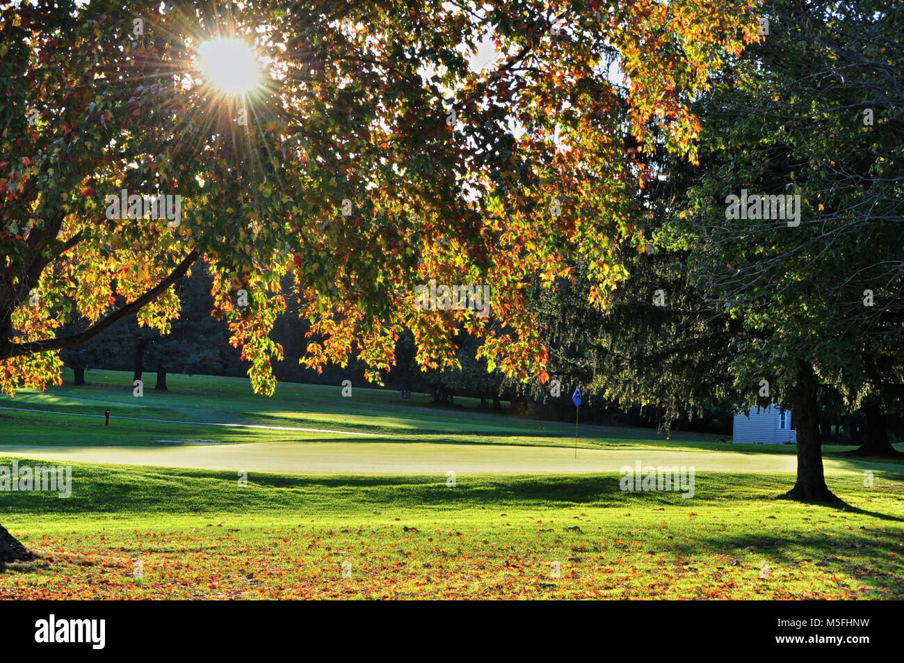 Sun shinning through trees on the 9th hole at APG golf course - Stock Image