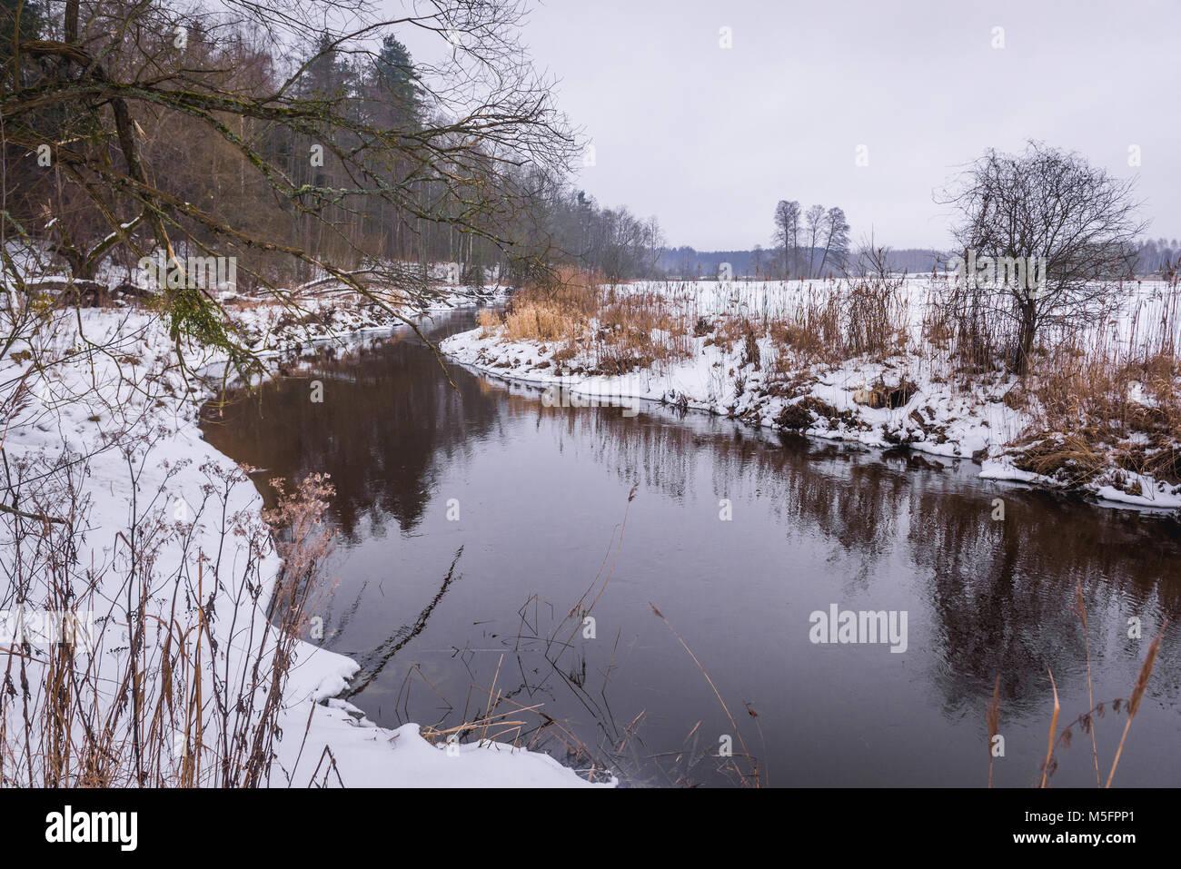 Narewka river, tributary of the Narew river in Gruszki village within Hajnowka County, Podlaskie Voivodeship of - Stock Image