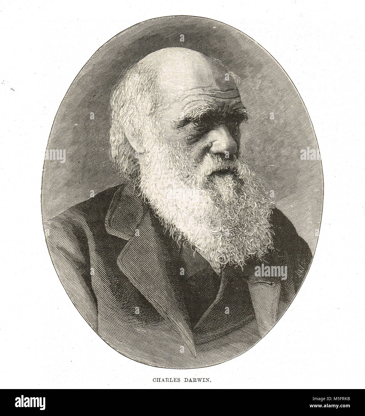 Alfred Russel Wallace Stock Photos & Alfred Russel Wallace ...