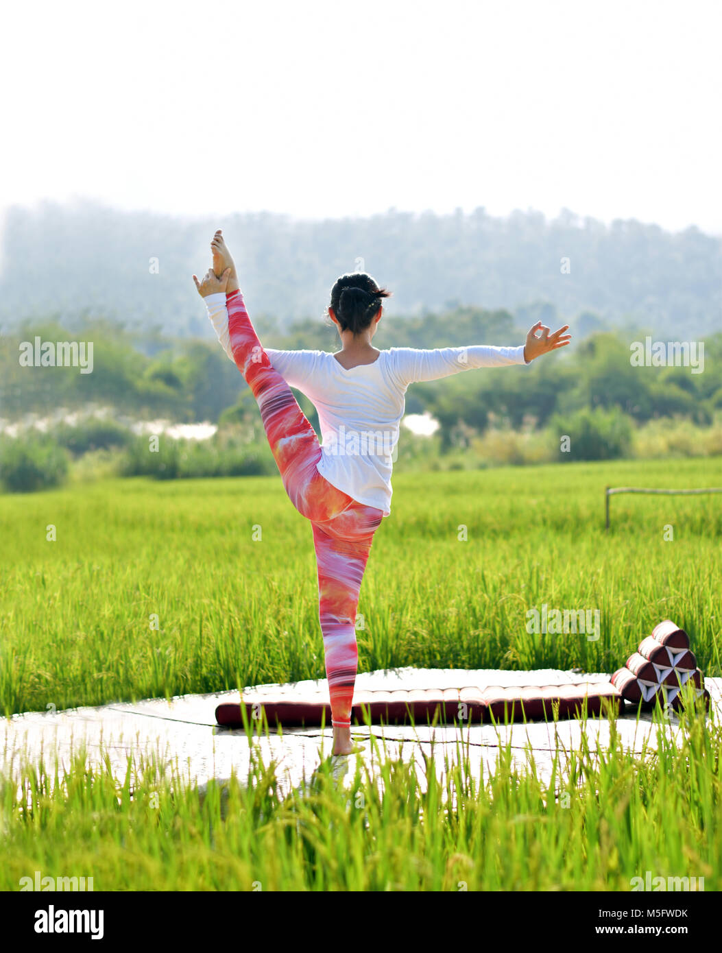 A woman do variation of utthita hasta padangusthasana yoga pose on a wood terrace in a green rice field, outdoor - Stock Image
