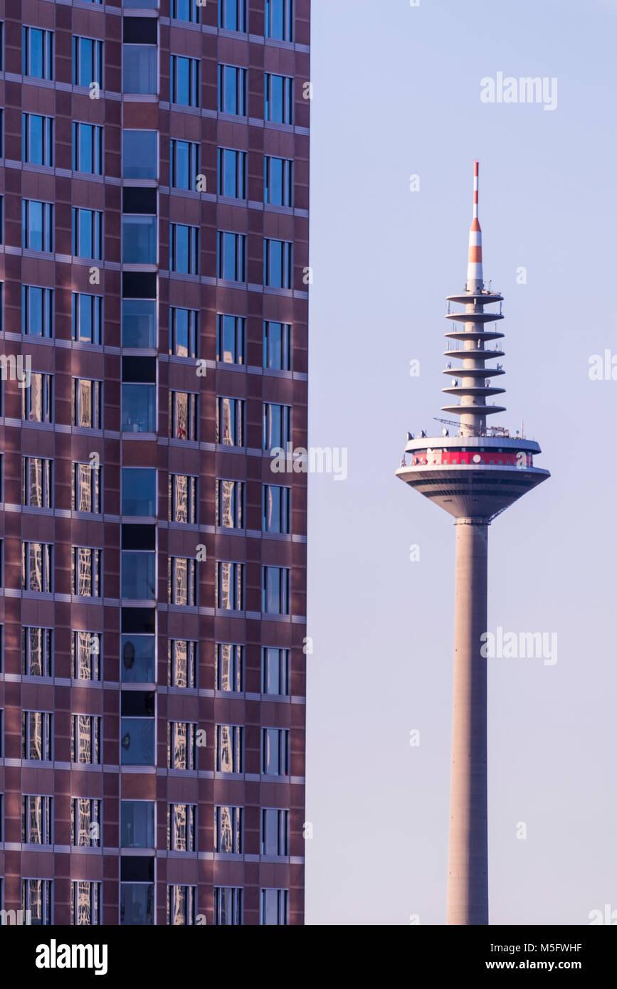 Fernsehturm, Frankfurt, Hessen, Deutschland, Europa - Stock Image