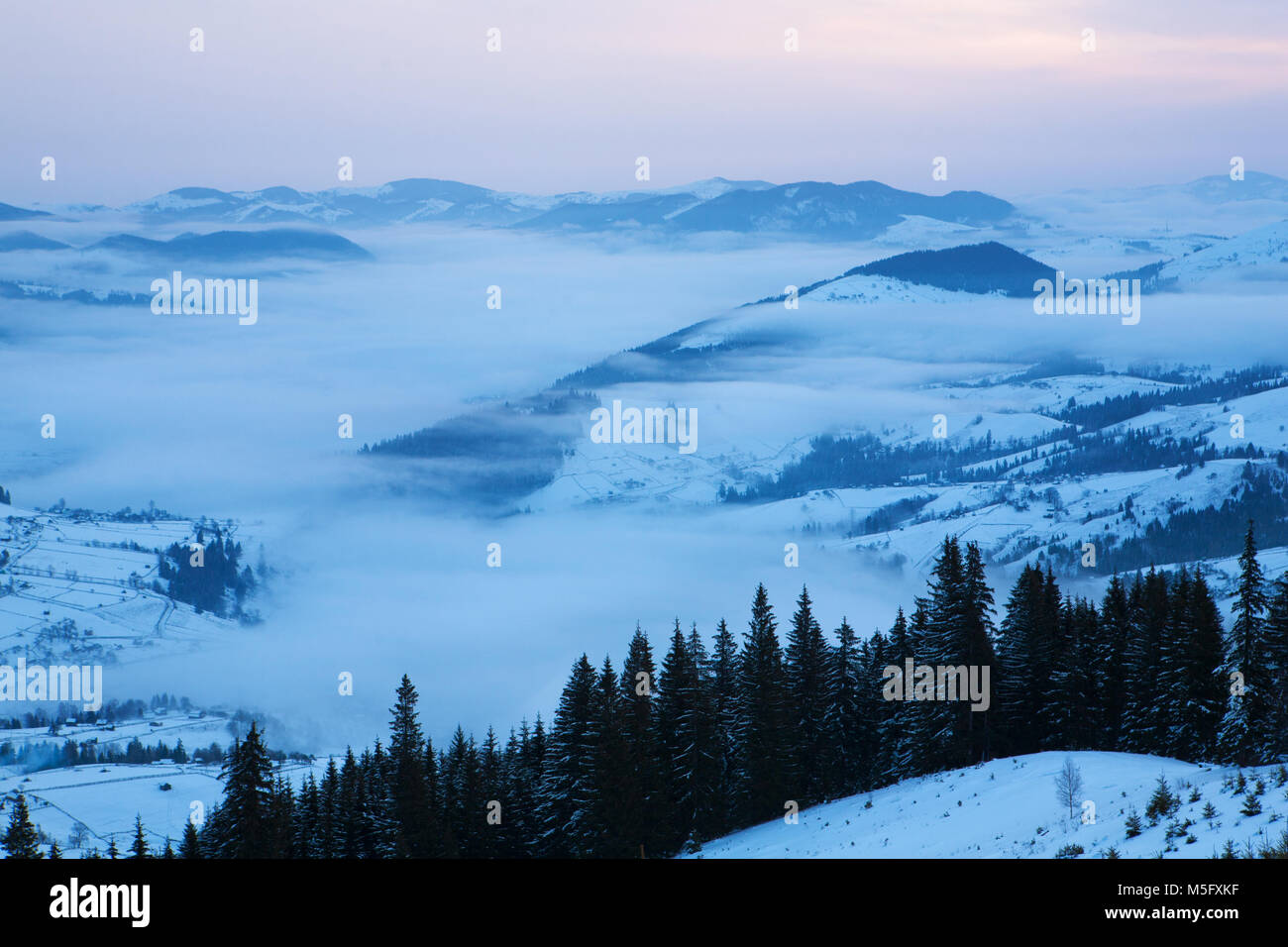 The fog covers the valley at dawn. Carpathians, winter. Stock Photo