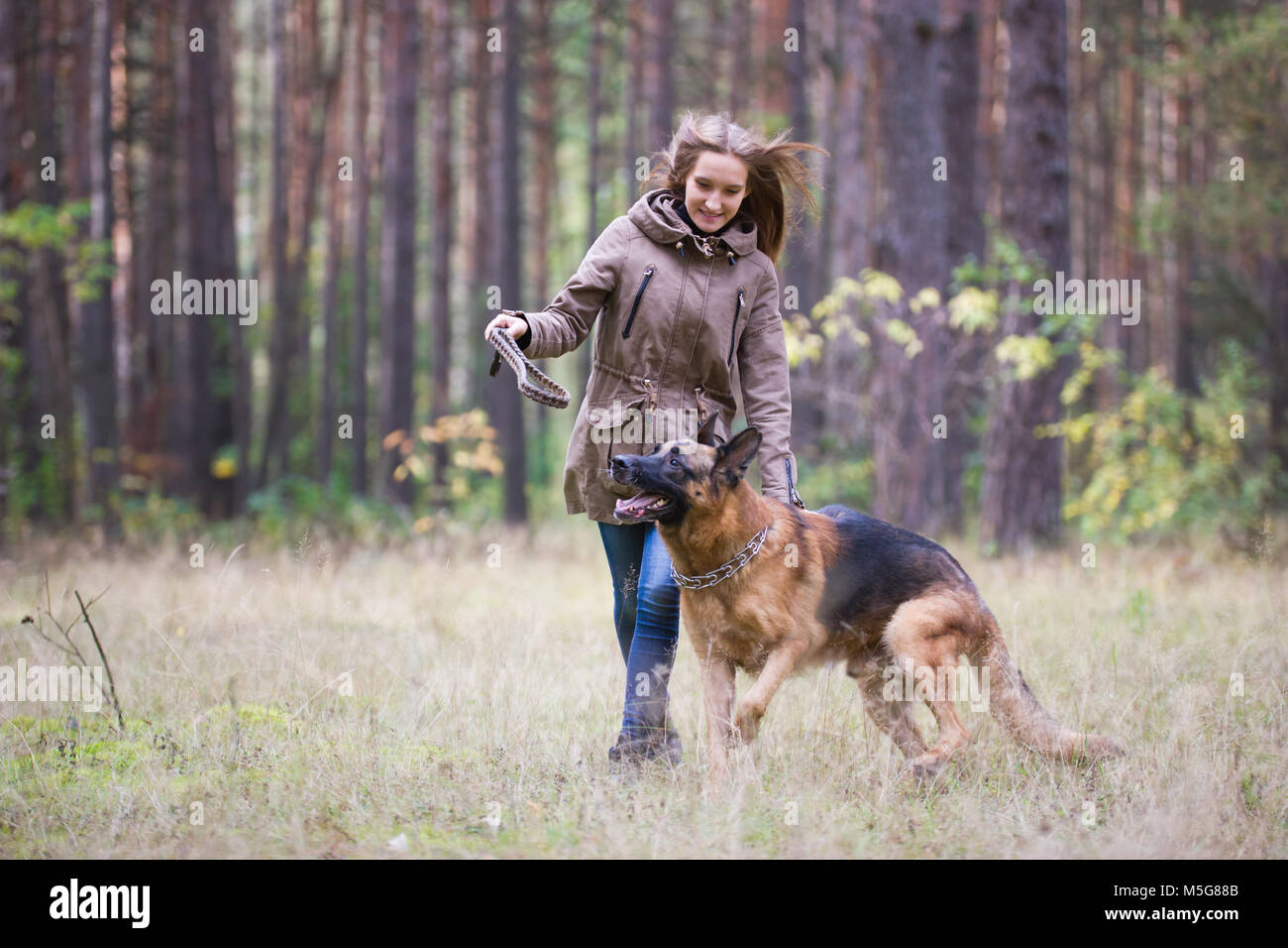Young attractive woman playing with German Shepherd dog outdoors in the autumn park - Stock Image
