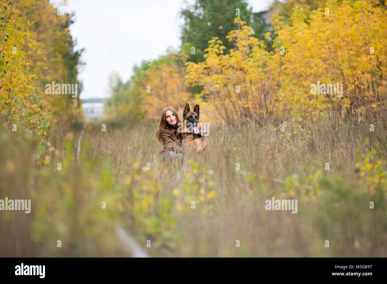 Attractive young woman walking wuth her dog German shepherd at autumn forest, near rail way - wide angle - Stock Image