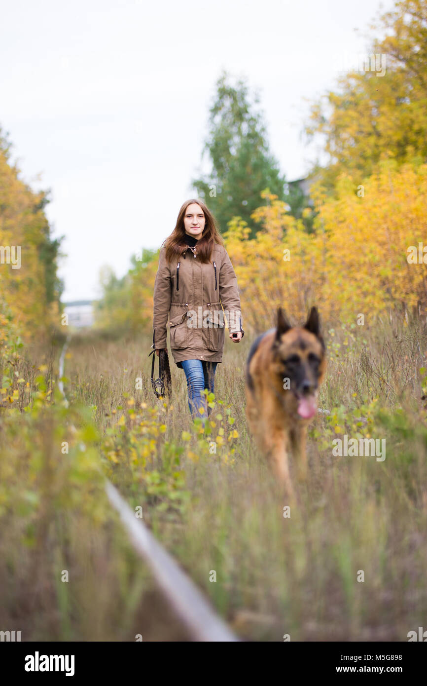 Attractive young woman walking with her dog German shepherd at autumn forest, near rail way - the girl is in focus - Stock Image