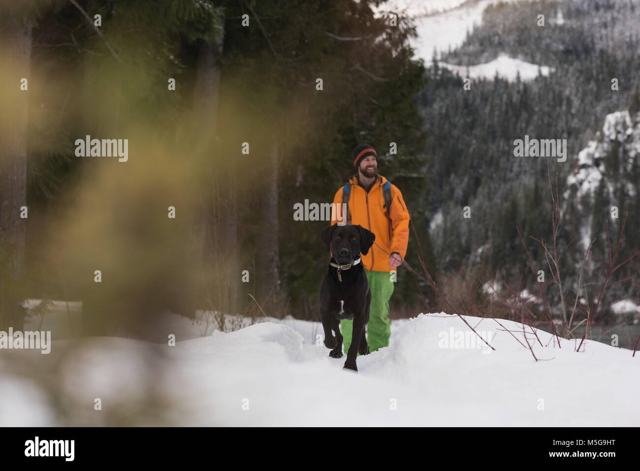 Man walking with his dog on a snowy landscape - Stock Image