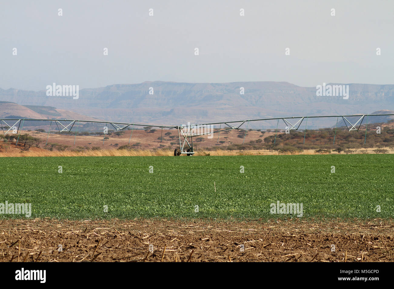 A center pivot irrigation system on farmland, Free State, South Africa - Stock Image