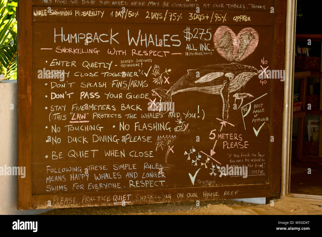 Instructions for the observation of whales. Ha'apai islands. Tonga - Stock Image