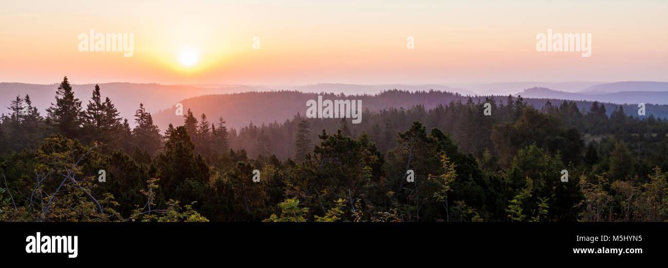 Deutschland, Baden-Württemberg, Schwarzwald, Blick vom Schliffkopf, Wald, Bäume, Nebel, Sonnenaufgang - Stock Image