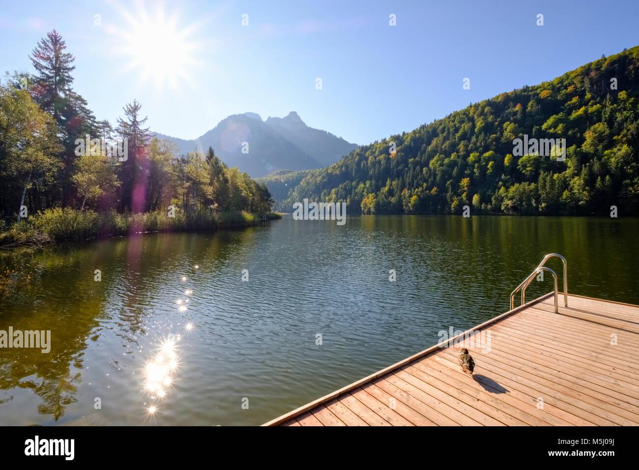 Badesteg, Schwansee bei Schwangau, Königswinkel, Ostallgäu, Allgäu, Schwaben, Bayern, Deutschland Stock Photo