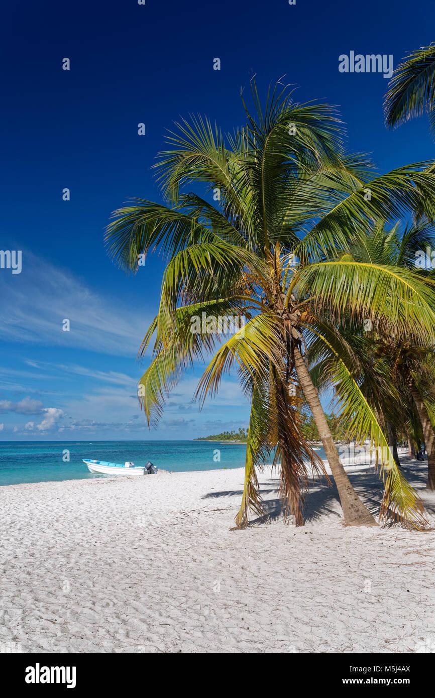 Carribean, Dominican Republic, beach on the Caribbean Island Isla Saona - Stock Image