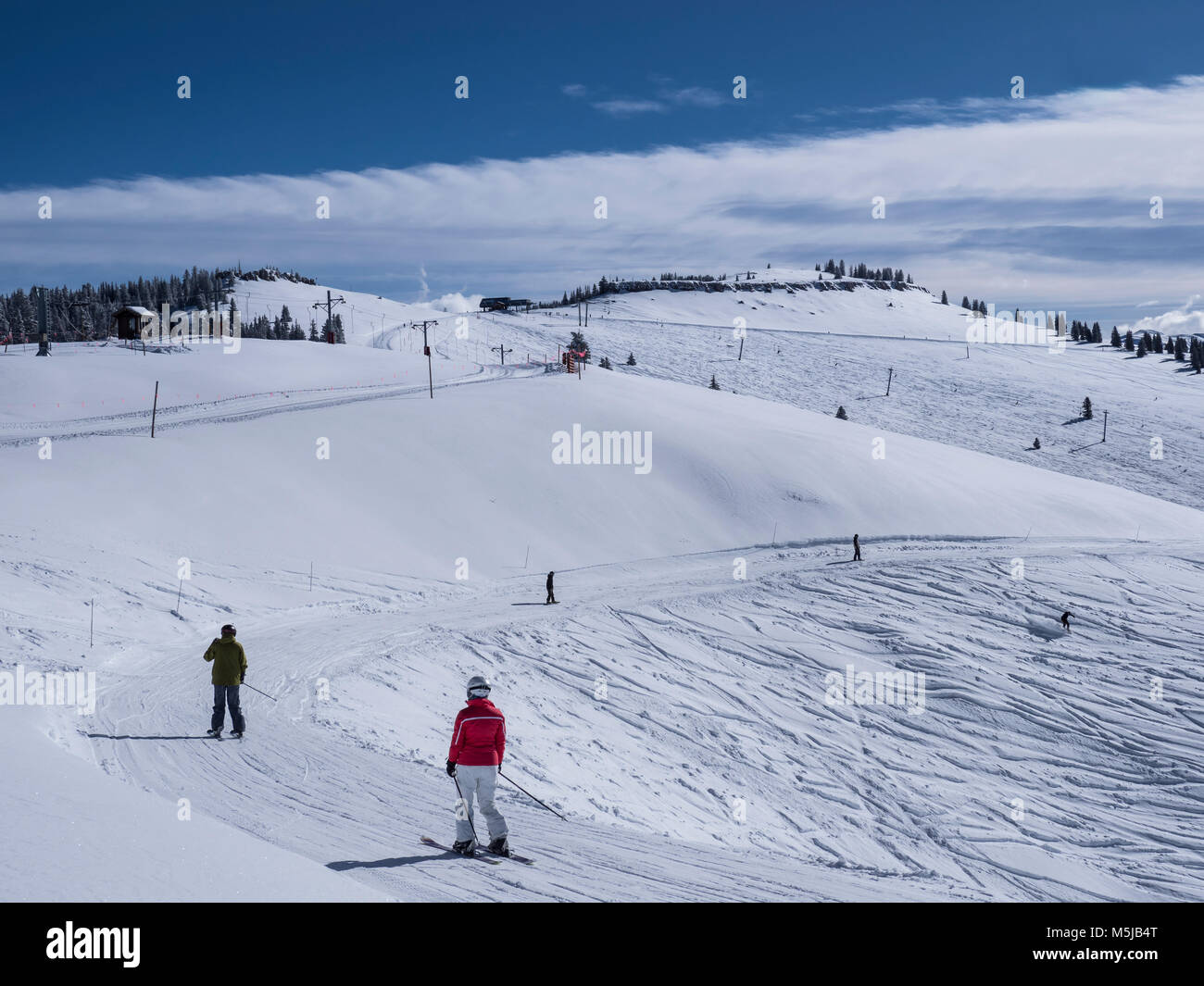Start of the Timberline Catwalk trail, winter, Vail Ski Resort, Vail, Colorado. - Stock Image
