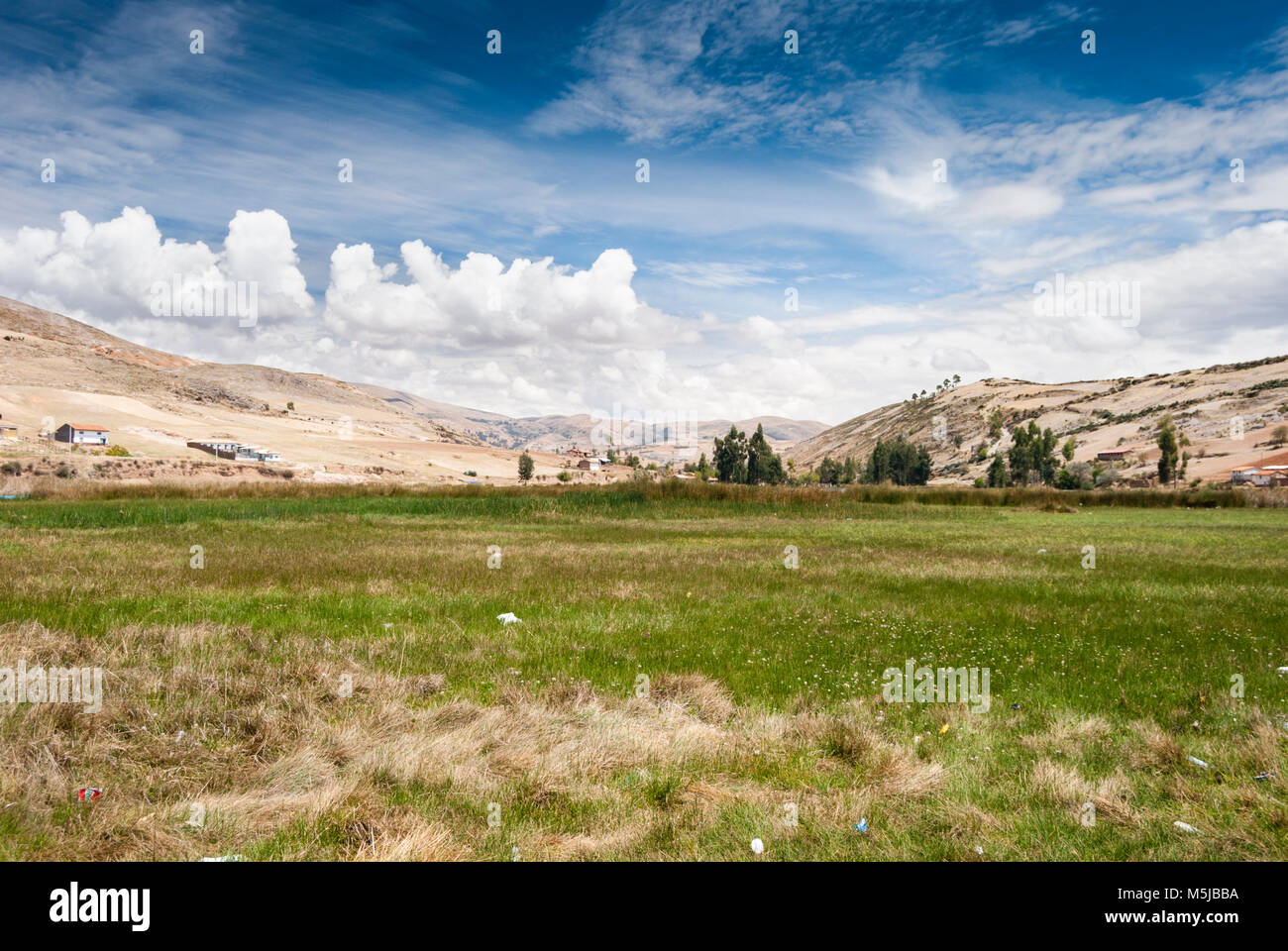 Pastizal. Paisaje. Pastureland. Landscape. - Stock Image