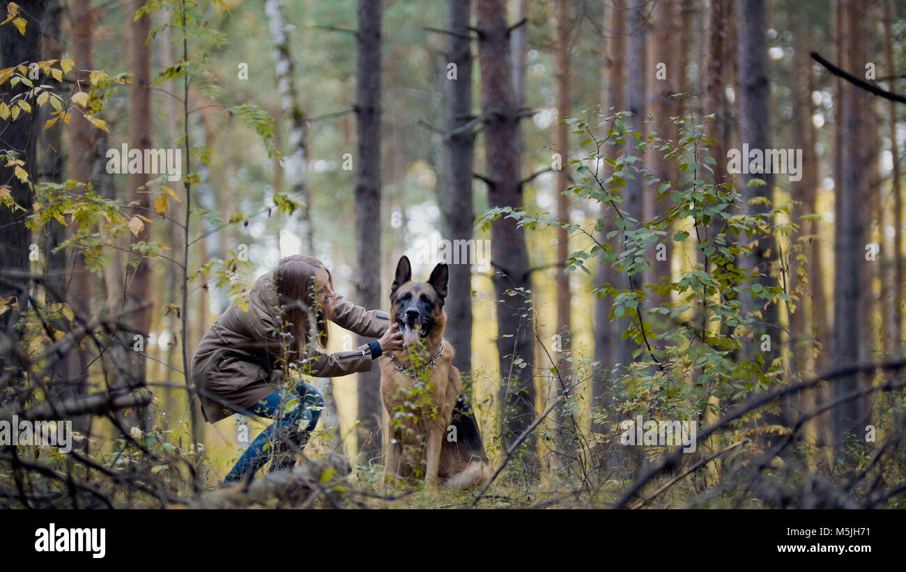Cute girl playing with her pet - german shepherd in park - Stock Image