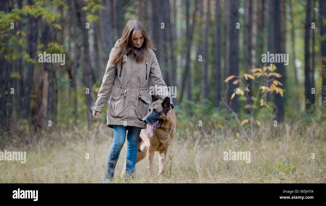 Blonde hair female playing with her pet - german shepherd - walking on a autumn forest - Stock Image