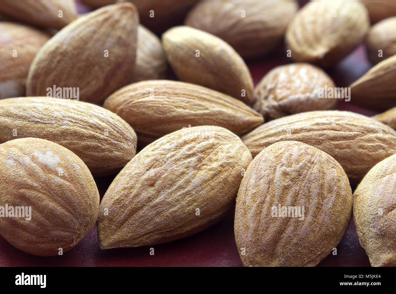 Dried apricot kernel fruit - extreme close up - Stock Image