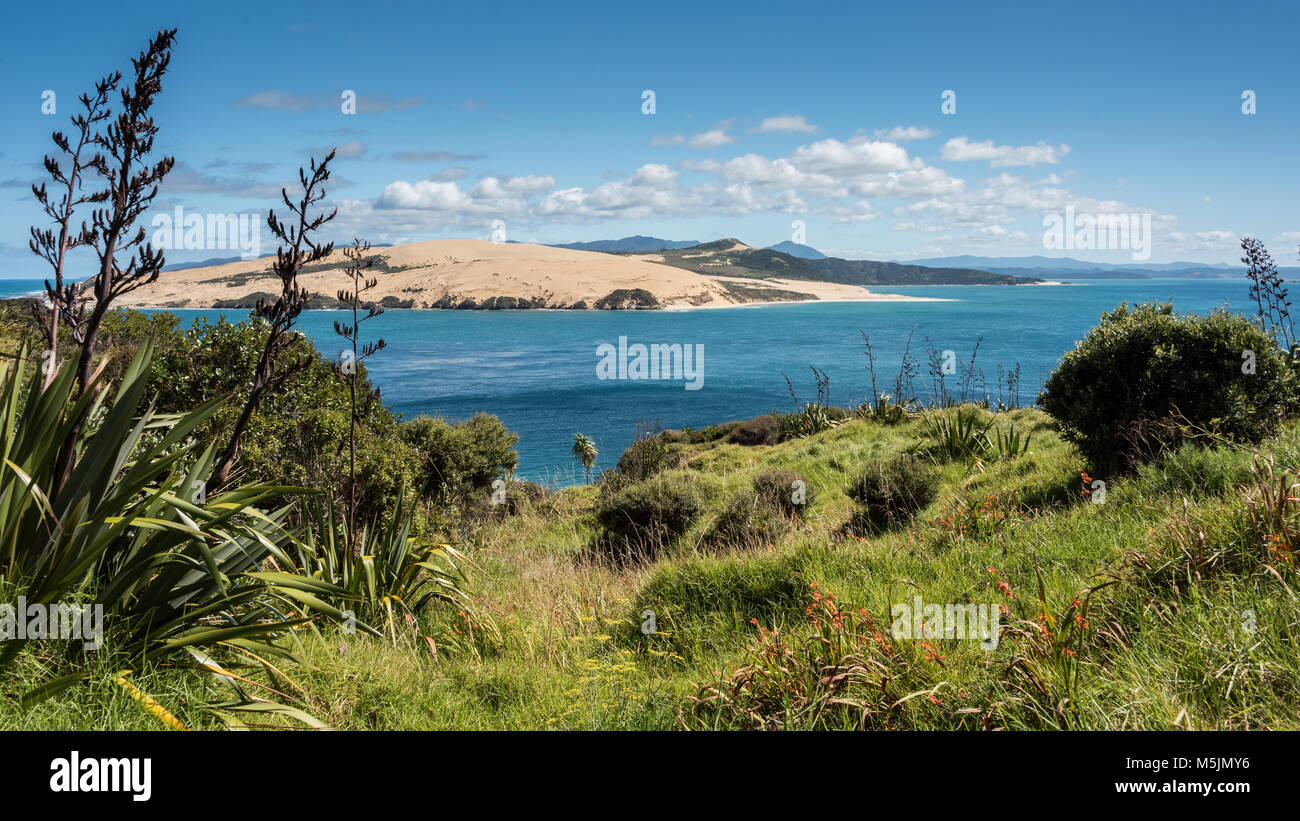 Arai-Te-Uru Peninsula, Near Openoni, North Island, New Zealand Stock Photo