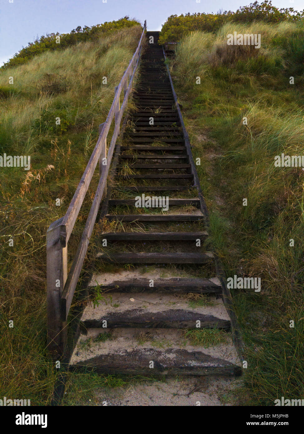 Wooden stair to the lookout on a sand dune,Henne Strand,Syddanmark,Denmark - Stock Image