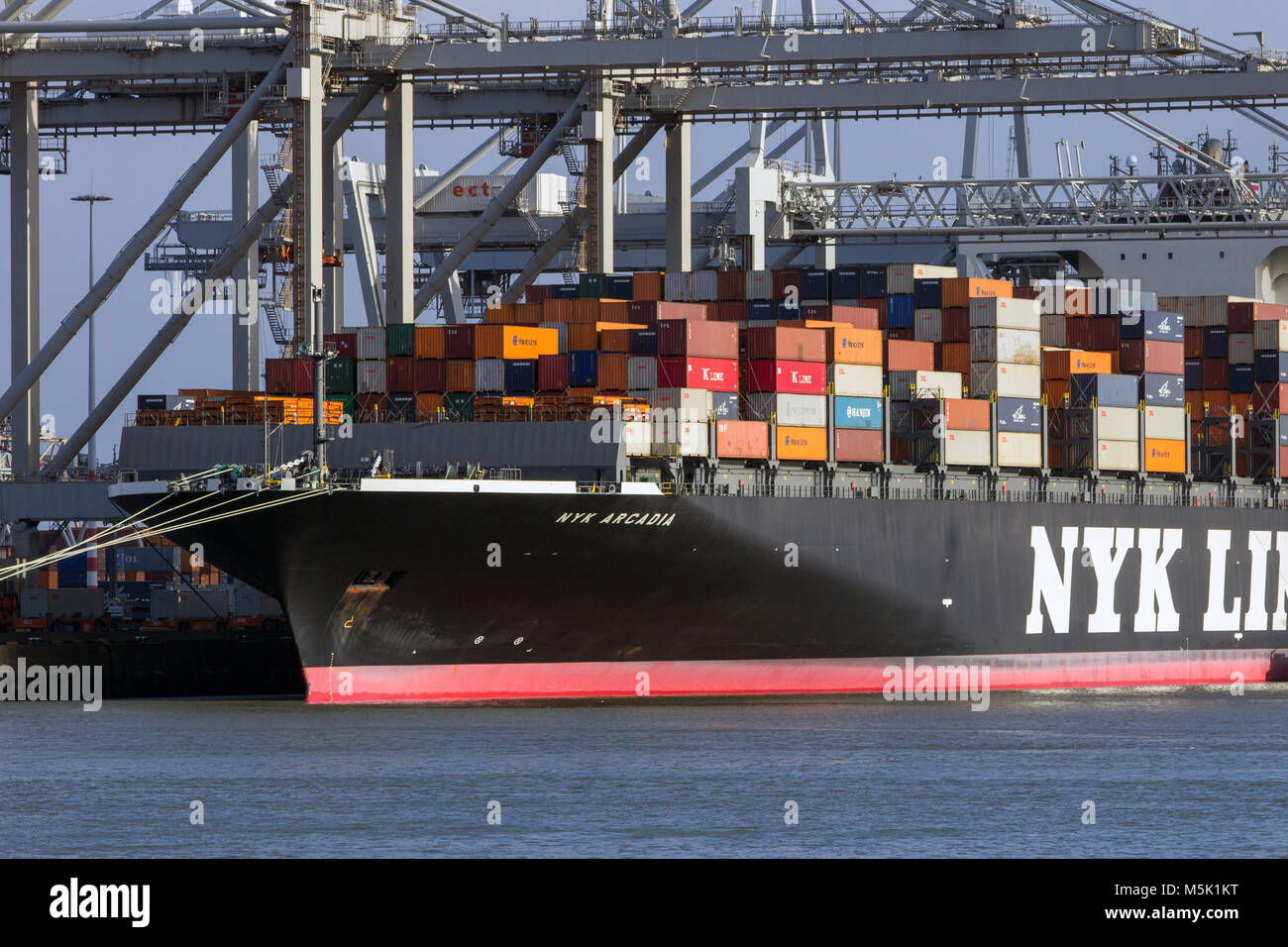 ROTTERDAM, THE NETHERLANDS - JAN 13, 2012: Nyk Line container ship loaded by gantry cranes at the ECT Terminal in - Stock Image