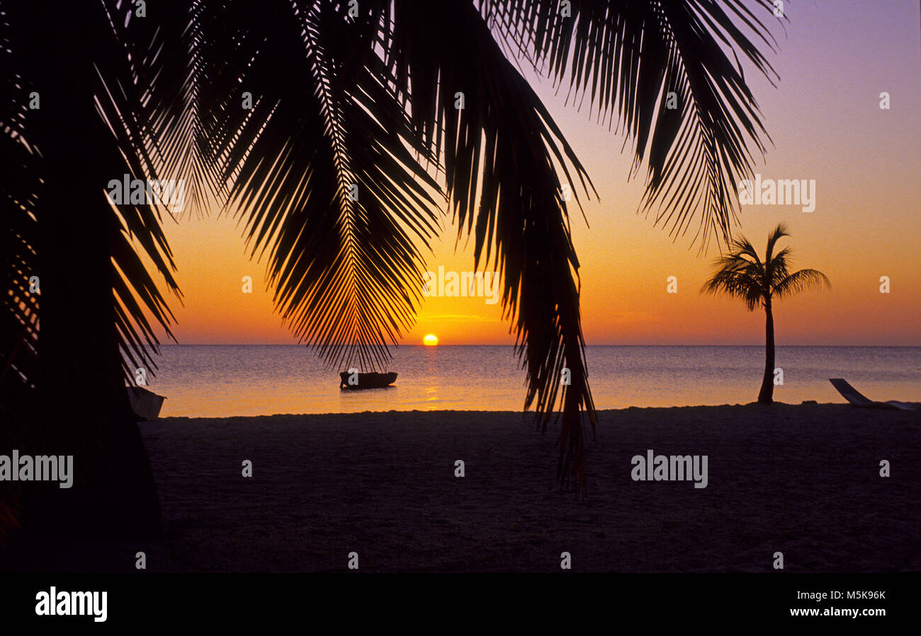 Sonnenuntergang am Strand von Roatan, Bay islands, Honduras, Karibik | Sunset at beach of Roatan island, Bay islands, - Stock Image