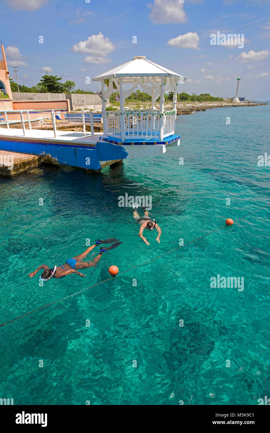 Snorkeller in crystal clear water at hotel Cozumel, behind the Honeymoon lodge on jetty, Cozumel, Mexico, Caribbean - Stock Image