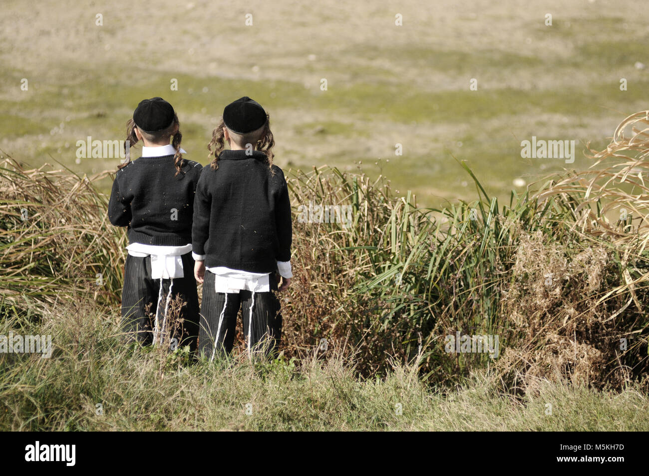 jews, jewish, judaism, hasidim, back, behind - Stock Image