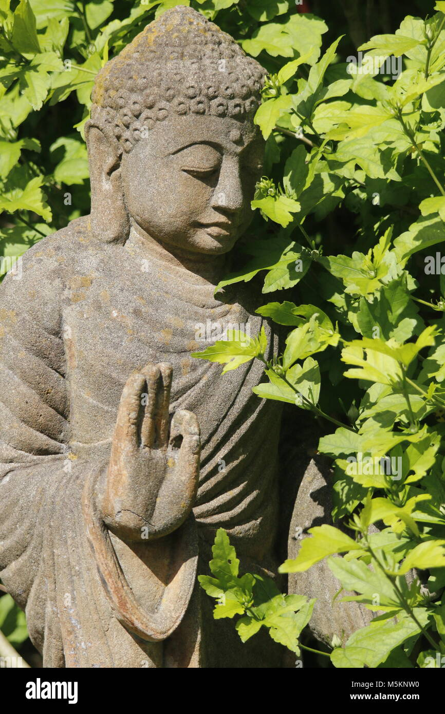 Buddha statue in a garden with Hibiscus - Stock Image