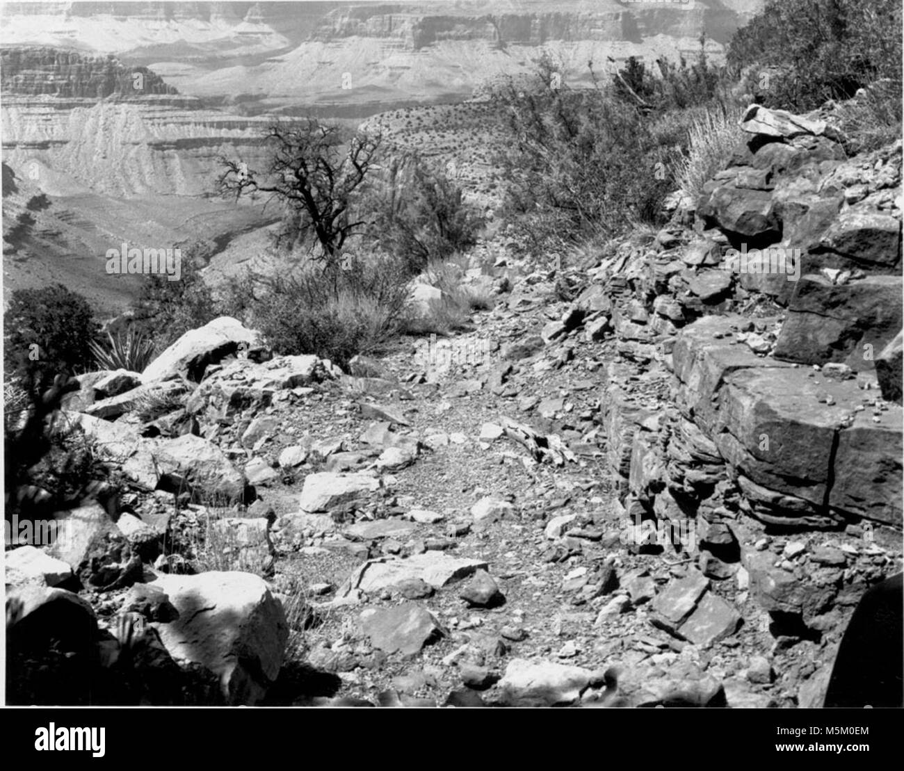 D Grand Canyon Historic Grandview Trail . GRANDVIEW TRAIL STORM DAMAGE. - Stock Image