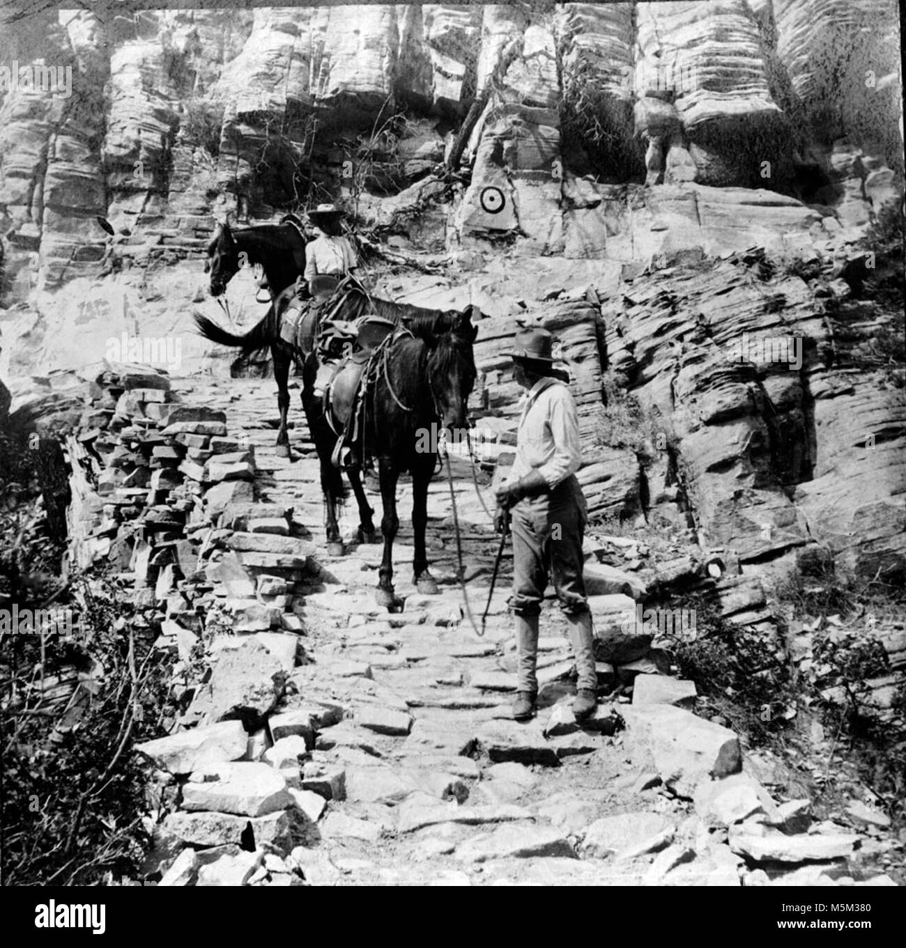 Grand Canyon Grandview Trail cobblestone  . ONE MAN AND ONE WOMAN LEADING THREE HORSES DOWN THE COBBLESTONE SECTION - Stock Image