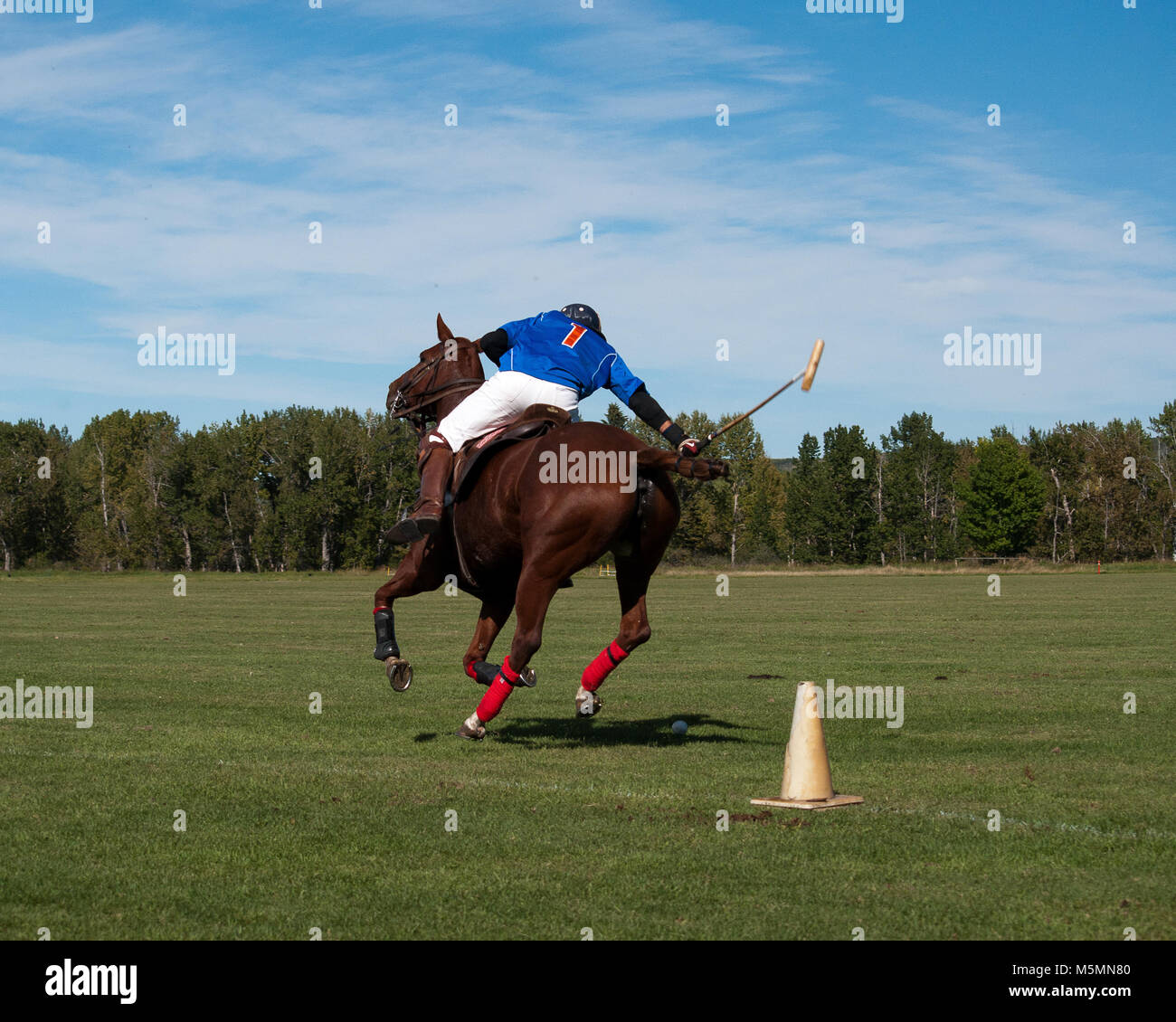 Amateur Polo Players in Tournament Play at the Black Diamond Polo Club, September 3rd  and 4th, 2011 Stock Photo