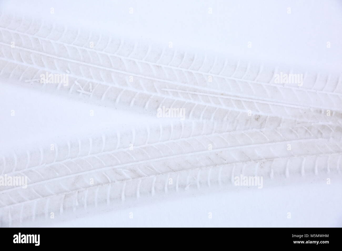 The reflected tread of the car tire on fresh snow tells a lot about the quality and suitability of the tire for - Stock Image