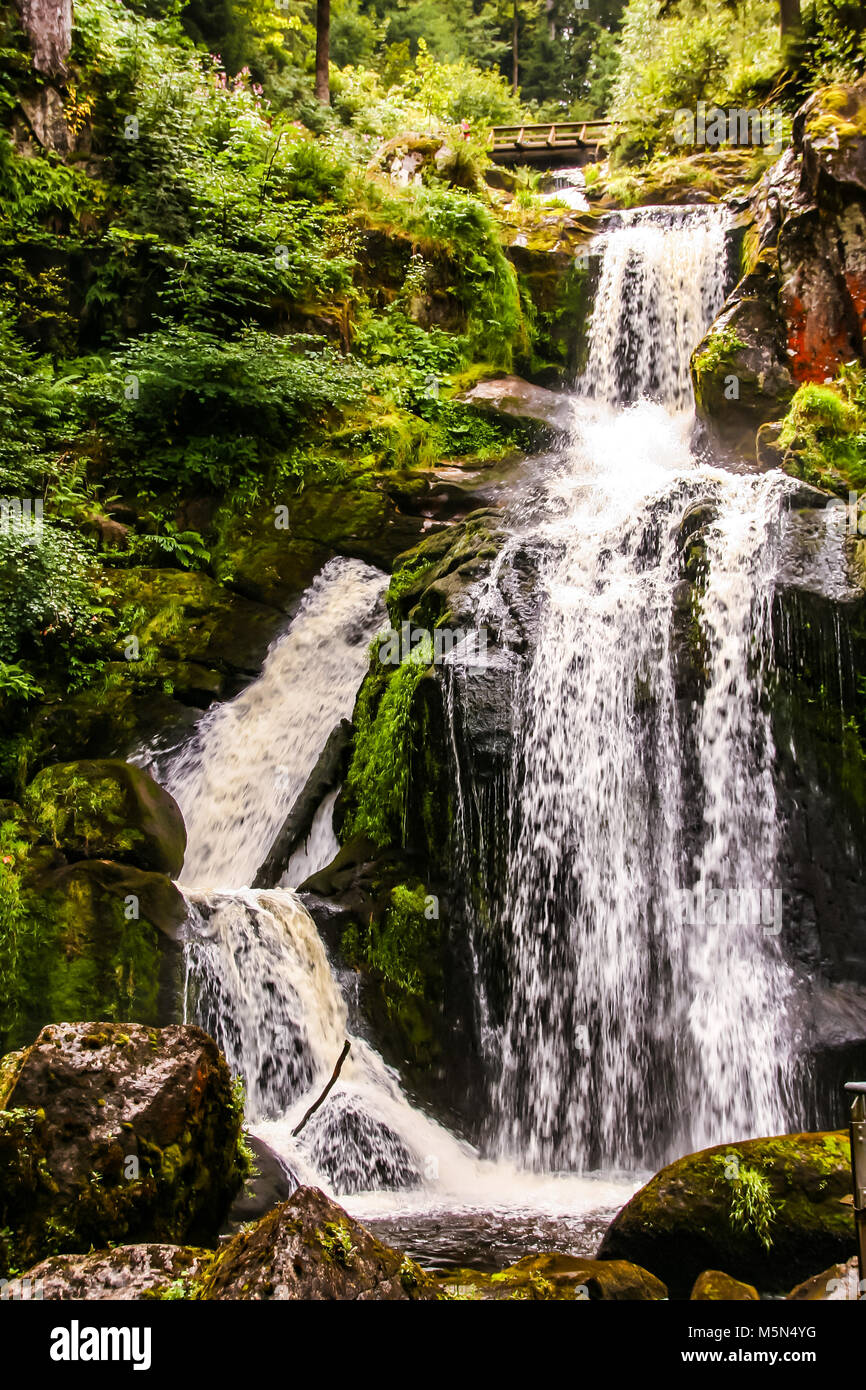 the highest waterfall of Germany at Triberg, in the black forest , baden wuttemberg - Stock Image