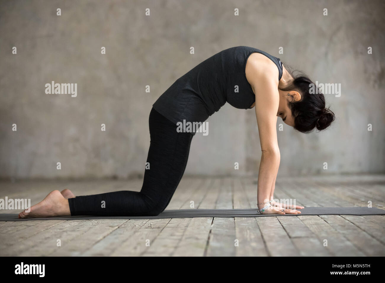 Young woman practicing yoga, doing asana paired with Cow Pose on the inhale exercise, Cat, Marjaryasana pose, working - Stock Image