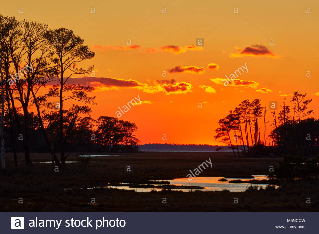 The orange post-sunset sky is reflected in the ponds found in the marsh of the Chincoteaque National Wildlife Refuge - Stock Image