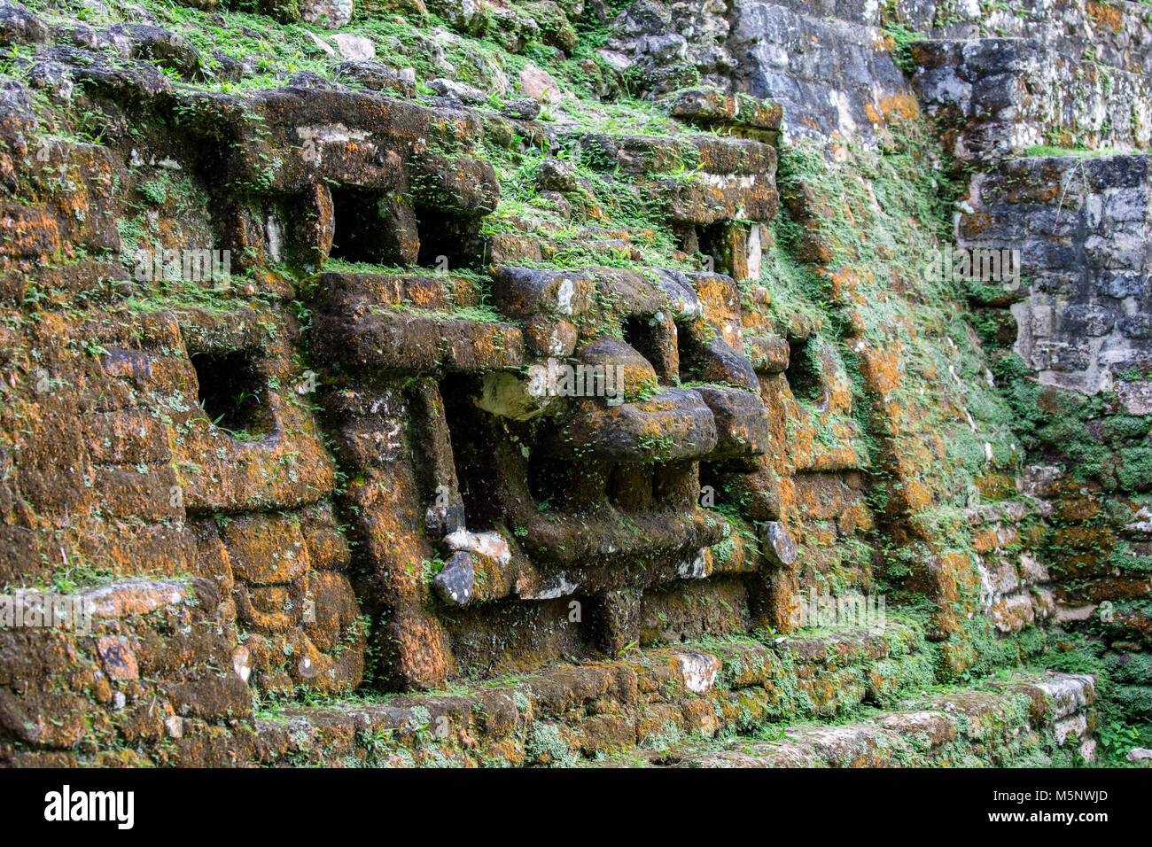 The Belize Lamanai Mayan Ruins - Stock Image
