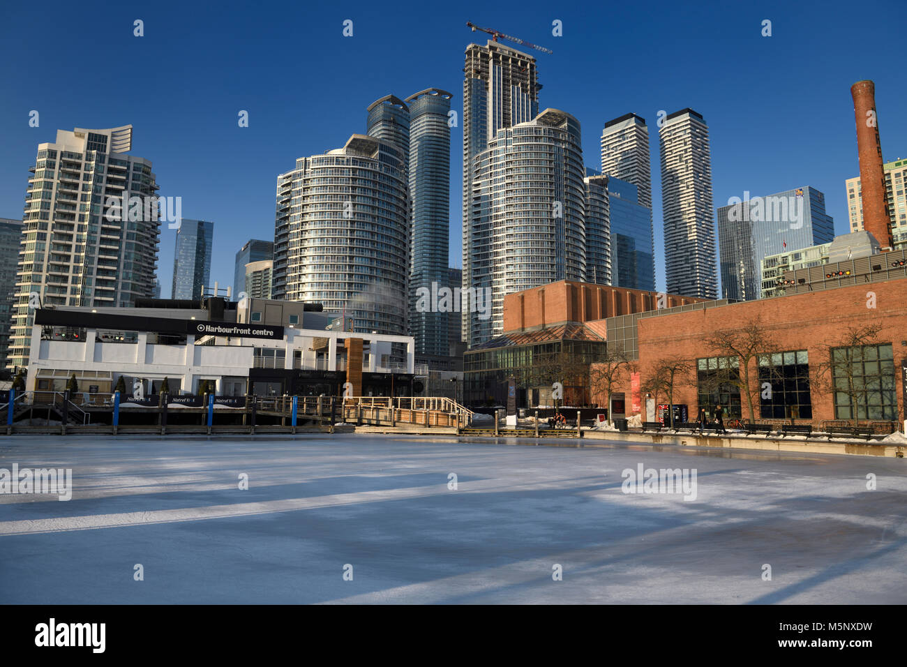 Empty Harbourfront Centre Natrel Pond skating rink with highrise condominium towers and Power Plant contemporary - Stock Image