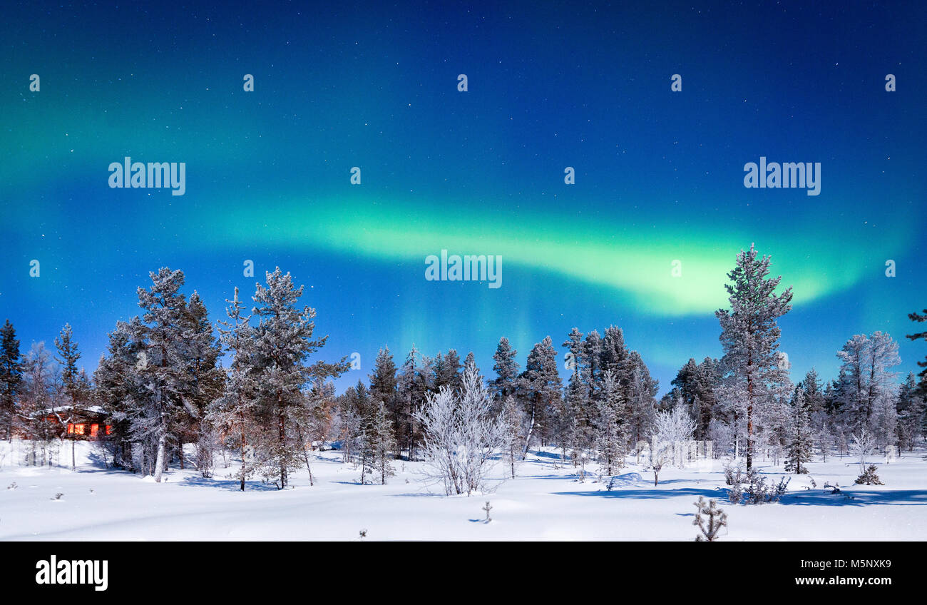 Amazing Aurora Borealis northern lights over beautiful winter wonderland scenery with trees and snow on a scenic - Stock Image