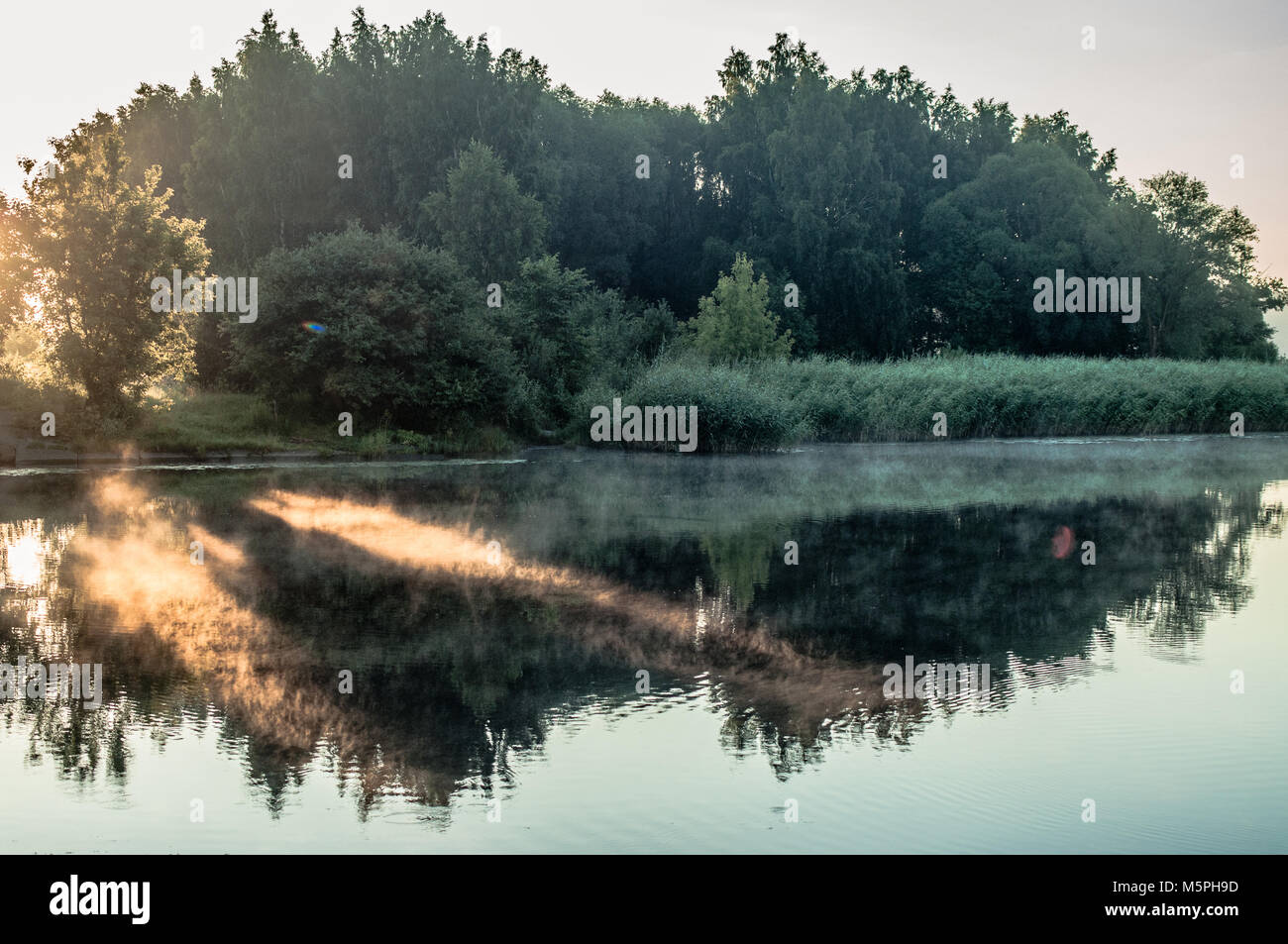 Beautiful tree reflections on lakes surface. - Stock Image