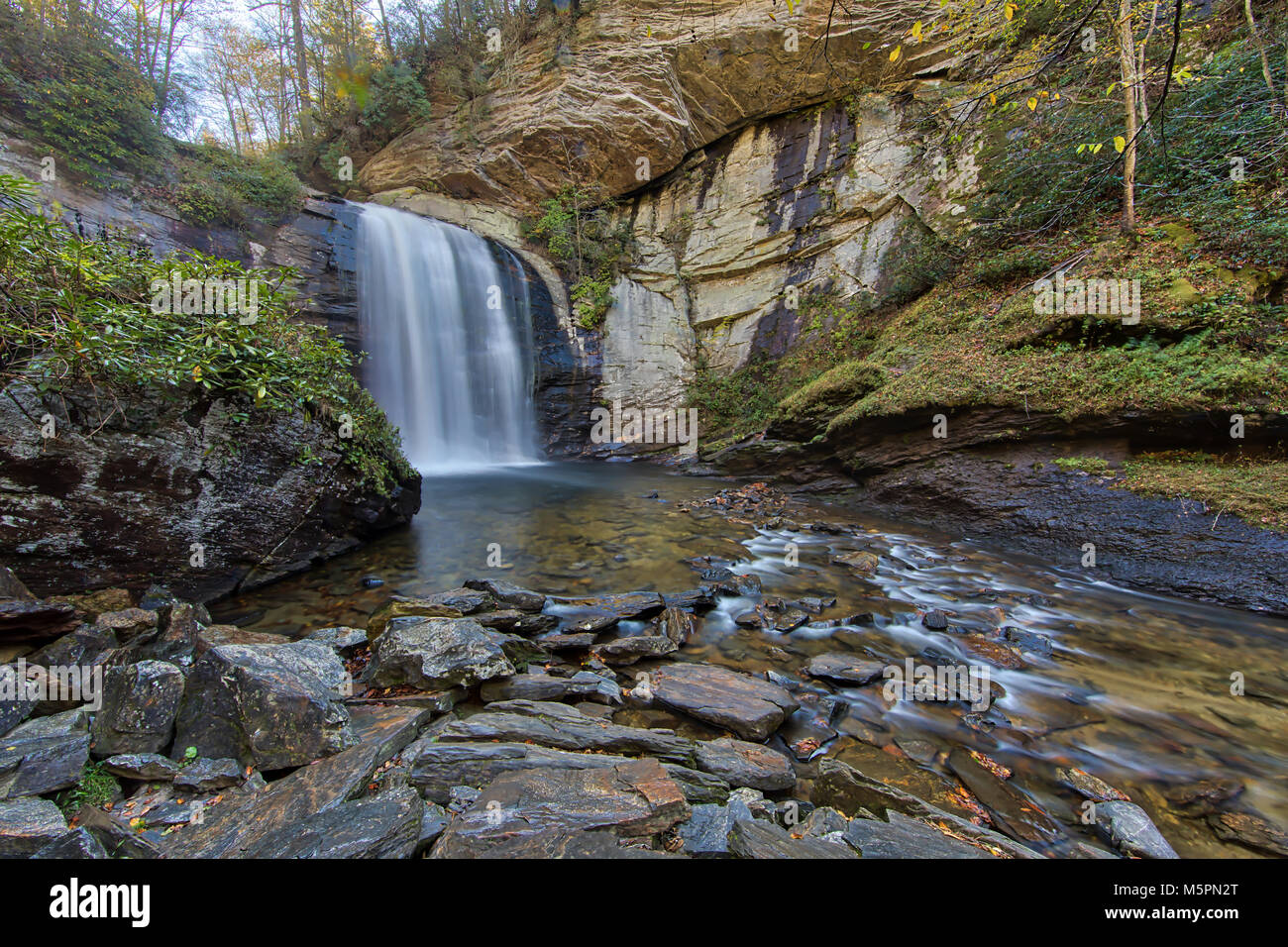 Looking Glass Falls - Stock Image