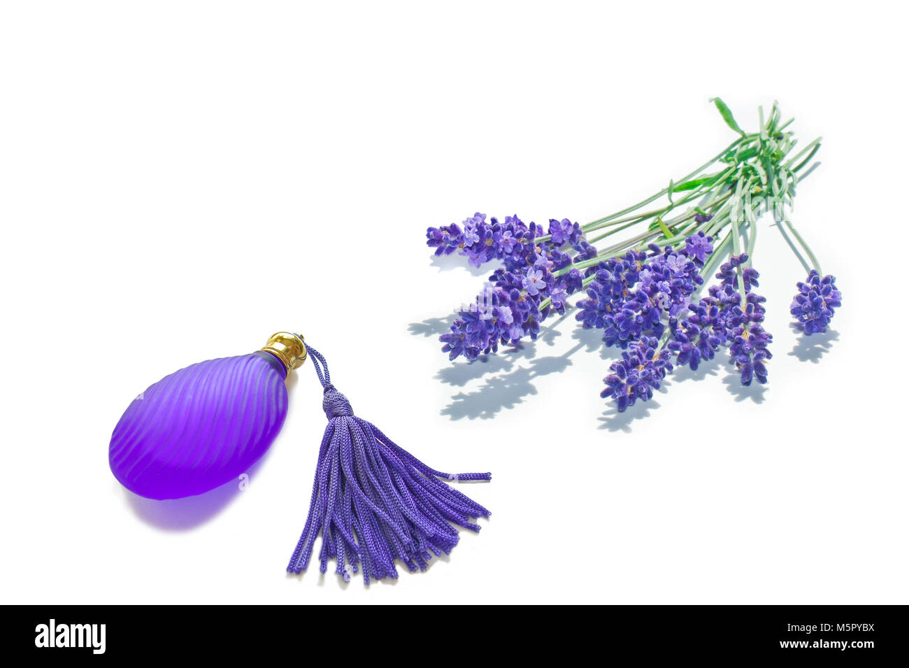 A bunch of lavender and a small fragrance flacon isolated - Stock Image