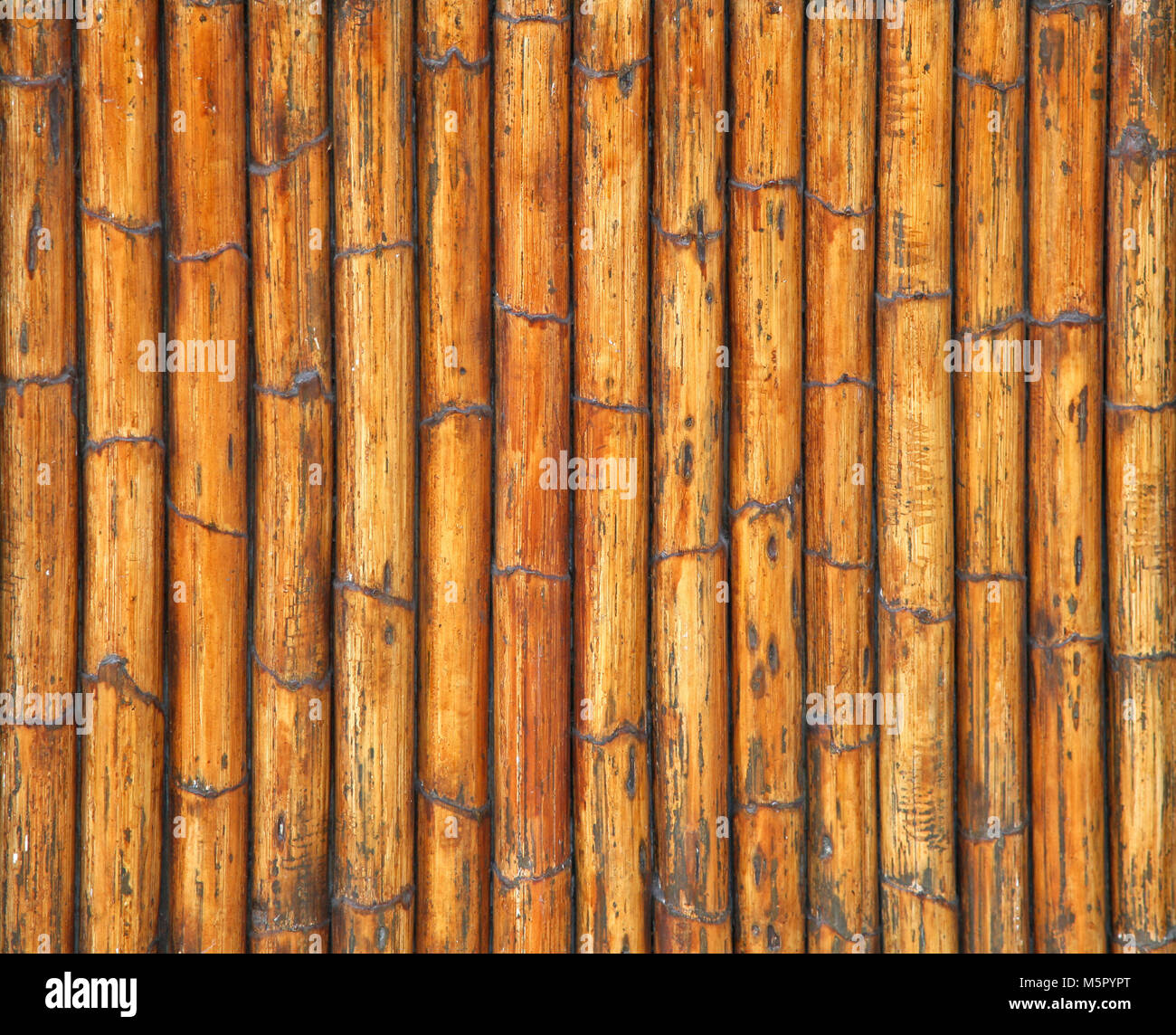 Detailed texture of wooden cane sticks surface Stock Photo