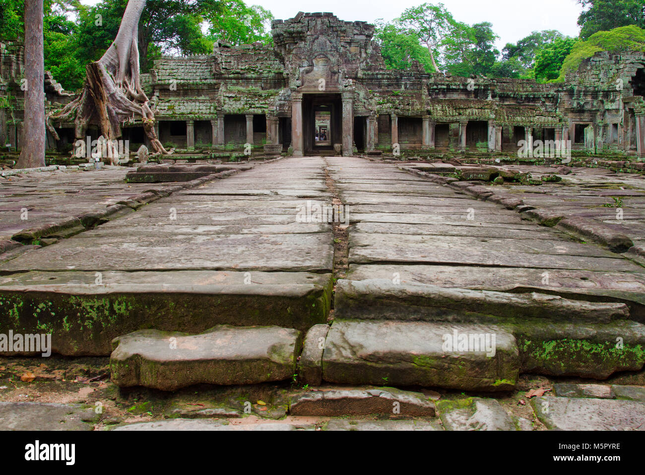 Angkor Wat, a UN Heritage Site in Cambodia. Made famous in the Movie Lara Croft: Tomb Raider. - Stock Image